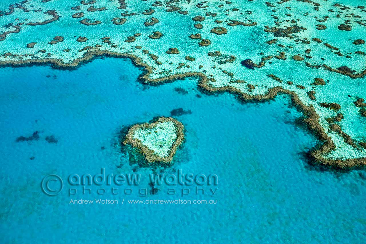 "Aerial view of ""Heart Reef"", a heart-shaped coral formation at Hardys Reef"