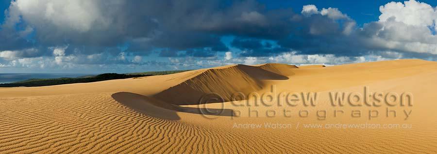 Sand dunes on the Wungul Sandblow