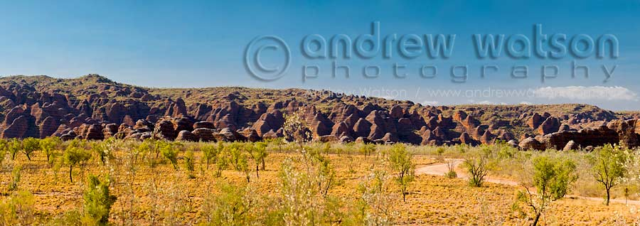 View across plains to domes of the Bungle Bungles