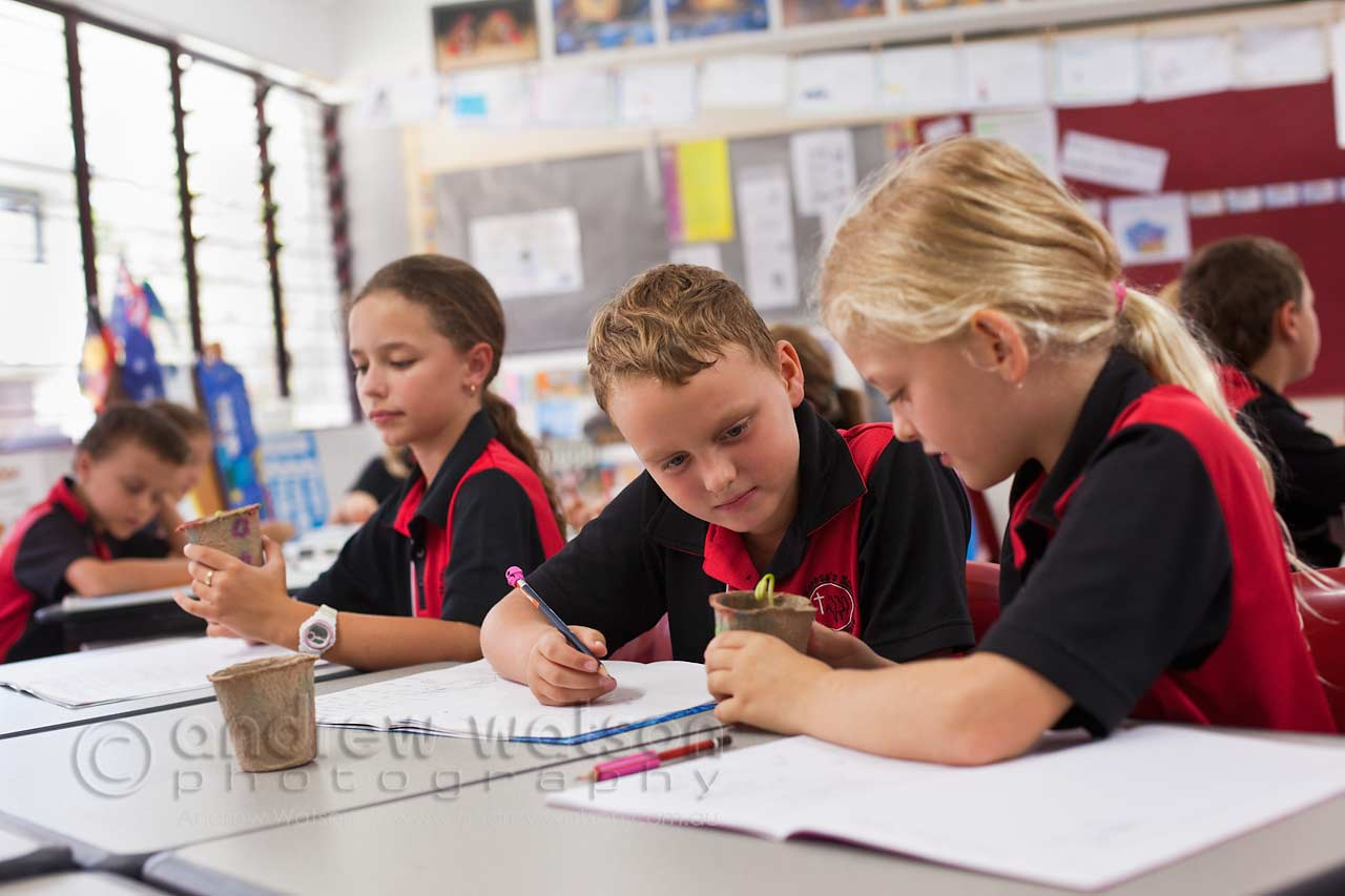St Anthony S Amp St Therese S Schools Cairns Schools Amp Education Andrew Watson Photography
