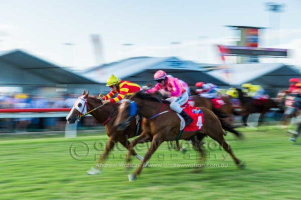 Horse racing at Cairns Amateurs Carnvial 2015