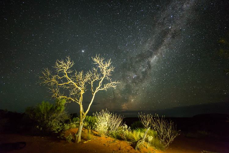 Image of central desert scenery with the Milky Way overhead