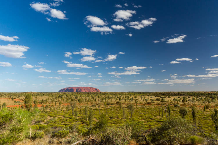 Image of Uluru surrounded by a green desert landscape