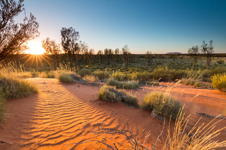 Image of sunrise in the central desert near Uluru