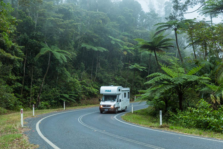 Image of campervan driving through Eungella National Park rainforest