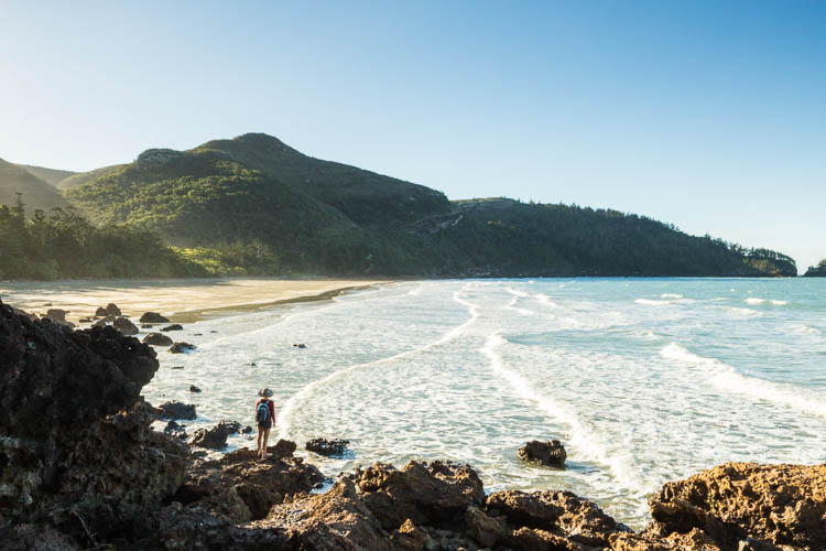 Image of hiker at Beachcomber Bay in Cape Hillsborough National Park