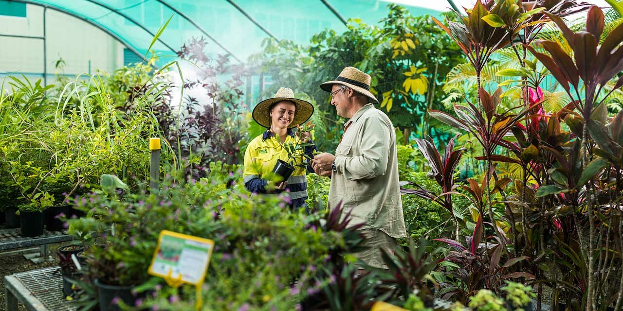 Horticulture student and teacher looking at plants in a greenhouse