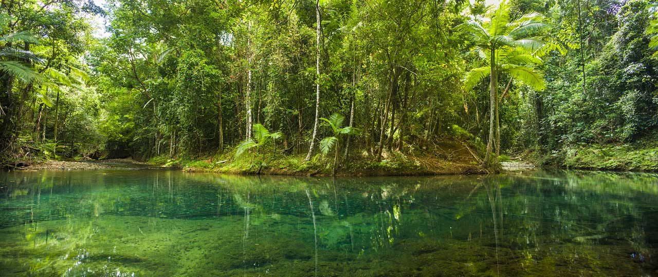 Clear waters of Cooper Creek rainforest swimming hole in Daintree National Park